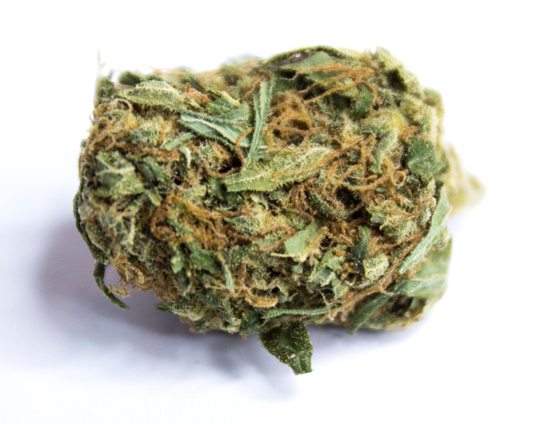 Mr Cannabis